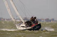 Ponziani - NED 2146, Alex Bouwer, Ligplaats: Durgerdam, Bouwer: Lewin, Indeling: vd Stadt